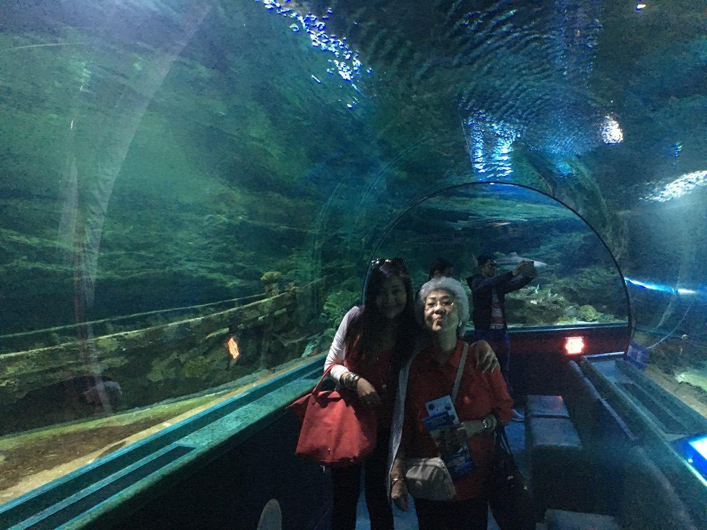 Underwater World Aquarium In Guam