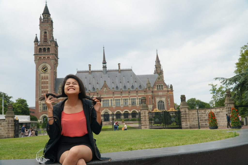 The Peace Palace the Hague